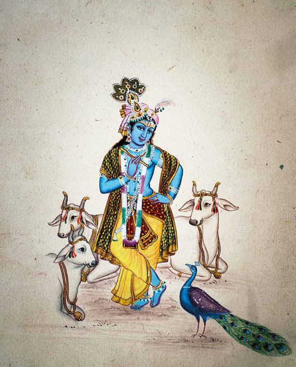 Krishna With Peacock and Cows